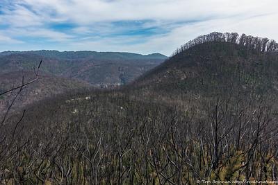 Mt Haystack and Mt Wilson