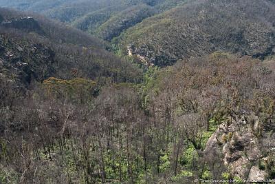 Cliffs of Mill Creek