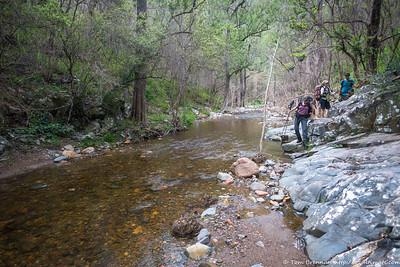 Walking up Breakfast Creek