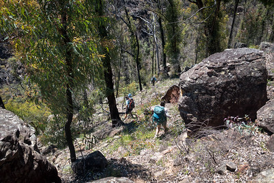 Descending into the gully