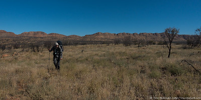 Stephen crossing the Alice Valley, the Heavitree Range in the background