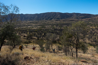 Crossing a low ridge in the Alice Valley