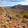Descending from Brinkley Bluff. The Larapinta Trail. West MacDonnell Ranges National Park.