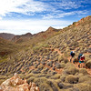 Stuart Imer and Michael Hampton on the Larapinta Trail. West MacDonnell Ranges National Park.