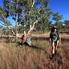 Day four. Karen Tempest crossing grassland on the way to Sandy Camp. Jatbula Trail, Nitmiluk National Park, Northern Territory.