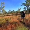 Day Two. Karen Tempest on grassy plains on the way to Crystal Falls, Jatbula Trail, Nitmiluk National Park, Northern Territory.