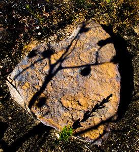 Shadows, Blue Mtns National Park