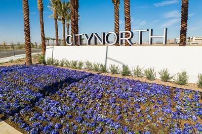 Scottsdale_citynorth_cbre-0023