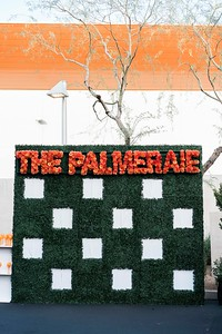 Palmeraie_social-1