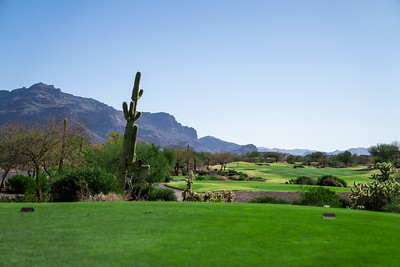 Superstition Mountain Country Club-95