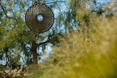 2443_d800b_CFSCC_Watsonville_Portrait_Photography