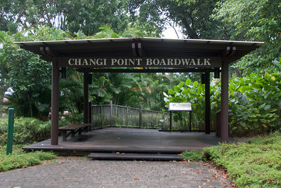 Singapore business trip 21 031011