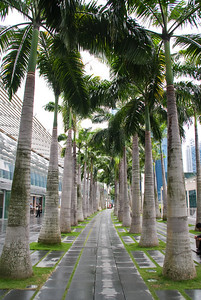 Singapore business trip 02 031011