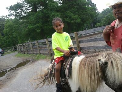 2013-Pony Ride /Orchard Beach -OTR1
