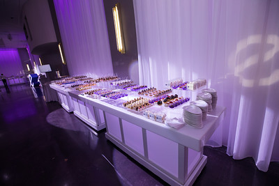 6-11-17 Emerge Opening Party-100