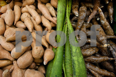 Yams, aloe vera and yucca roots are just some of the varieties of produce available at Supermercado Del Pueblo. The new grocery store is located at 2311 W. Erwin St. in Tyler.  (photo by Sarah A. Miller/Tyler Morning Telegraph)