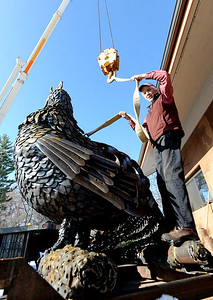 Robert Bellows connects his 5,000-lbs rooster sculpture to a moving crane on Friday. Robert Bellows has spend 11-months working on a sculpture of a rooster,  made from farm implements, that will be placed outside Alfalfa's Market in Boulder. For more photos of the rooster and a video, go to www.dailycamera.com. December 9, 2011 / Cliff Grassmick