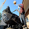 "Robert Bellows connects his 5,000-lbs rooster sculpture to a moving crane on Friday.<br /> Robert Bellows has spend 11-months working on a sculpture of a rooster,  made from farm implements, that will be placed outside Alfalfa's Market in Boulder.<br /> For more photos of the rooster and a video, go to  <a href=""http://www.dailycamera.com"">http://www.dailycamera.com</a>.<br /> December 9, 2011 / Cliff Grassmick"