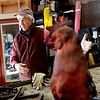 "Robert Bellows talks about some of the welding  techniques he used in making the rooster, following this clay model.<br /> Robert Bellows has spend 11-months working on a sculpture of a rooster,  made from farm implements, that will be placed outside Alfalfa's Market in Boulder.<br /> For more photos of the rooster and a video, go to  <a href=""http://www.dailycamera.com"">http://www.dailycamera.com</a>.<br /> December 9, 2011 / Cliff Grassmick"