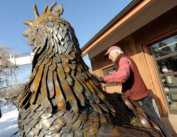 """Robert Bellows looks for the connection on his rooster for the crane to connect.<br /> Robert Bellows has spend 11-months working on a sculpture of a rooster,  made from farm implements, that will be placed outside Alfalfa's Market in Boulder.<br /> For more photos of the rooster and a video, go to  <a href=""""http://www.dailycamera.com"""">http://www.dailycamera.com</a>.<br /> December 9, 2011 / Cliff Grassmick"""