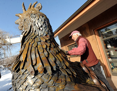 Robert Bellows looks for the connection on his rooster for the crane to connect. Robert Bellows has spend 11-months working on a sculpture of a rooster,  made from farm implements, that will be placed outside Alfalfa's Market in Boulder. For more photos of the rooster and a video, go to www.dailycamera.com. December 9, 2011 / Cliff Grassmick