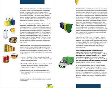 AMERIPEN Financial Platforms Executive Summary Inside