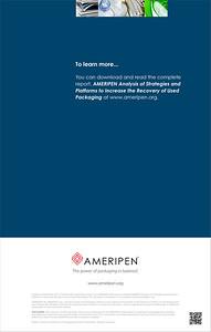 AMERIPEN Financial Platforms Executive Summary Back