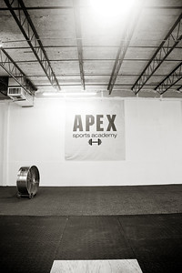 APEX_006