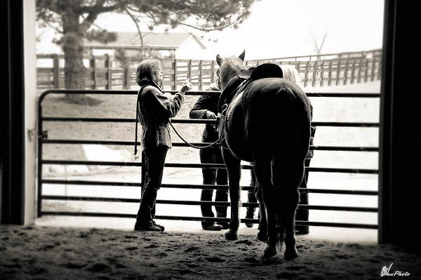 Horse2-12