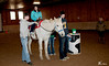 Horse2-33