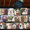 Dog magnets by Christine Winship (The Pedigree Artist), at the Artisans Exchange in Central Square, Chelmsford.  (SUN/Julia Malakie)