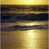yellow_surfxmas_22k-3611223157-O