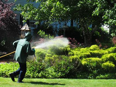 Barnes Nursery provides Services including spyder spraying