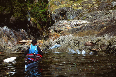 CRC Kayak and geese_adjLR