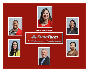 STATE FARM GRP TEMPLATE 3 WITH BOARDERS
