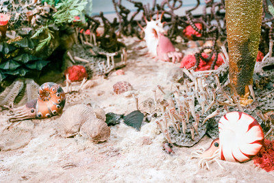 Paleozoic Periods Dioramas