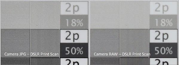 JPG vs RAW - DSLR Print Scan BW 3a