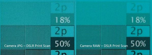 JPG vs RAW - DSLR Print Scan Cyan 3a