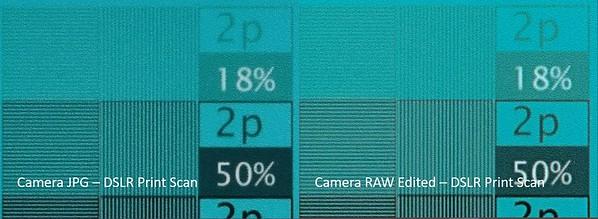 JPG vs RAW - DSLR Print Scan Cyan 3b