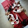 Cardinal Wuerl North Catholic HS Opens 2014-367-Edit-Edit