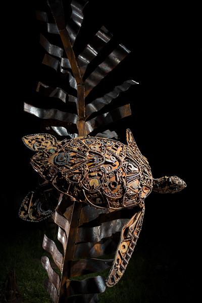 Turtle by John Pahlas