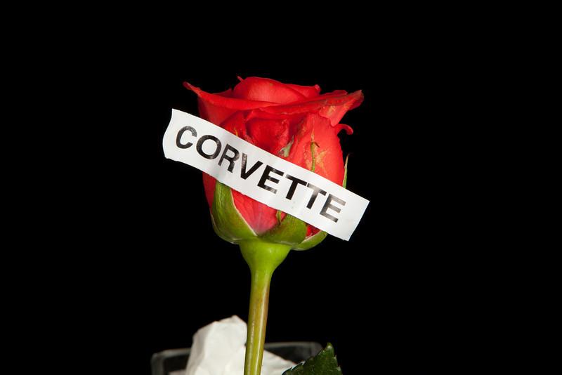 CORVETTE-5064