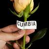 CUMBIA-5283