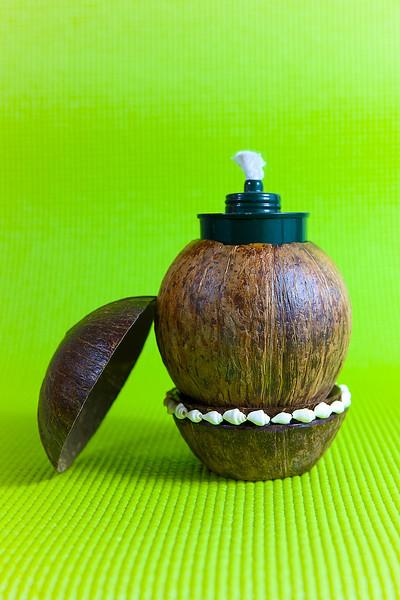 coconut_designs21