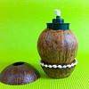 coconut_designs24