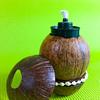 coconut_designs23