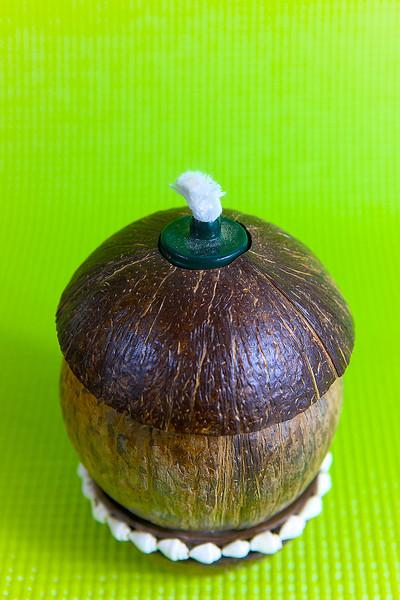 coconut_designs17