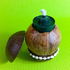 coconut_designs22