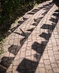 The Shadows of Prayer