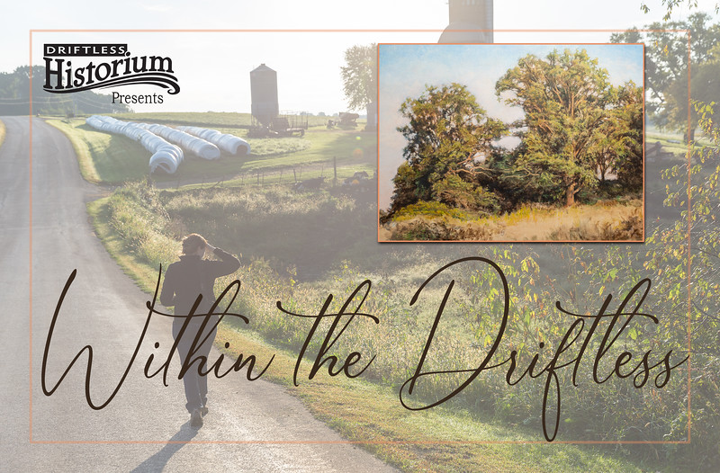 """'Within the Driftless' was a collaborative art showing featuring the paintings of Kathy Hofmann and my photography. My role in this project was as a sort of """"producer"""" in that I helped facilitate this exhibit. For a number of months I would escort the painter on local sojourns into the surrounding countryside in order to study the landscape and natural lighting. Documenting the project with photography was only part of my role. I also directed and installed the show, hanging each piece, label and lighting fixture. I also designed and created the various graphics used in advertising the show.  <br> <br> It hung in the main gallery of the Driftless Historium from early February until the show was closed by the Covid-19 pandemic when the museum shut its doors to the public."""